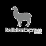 bolivian express